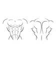 Bodybuilder torso line-art vector
