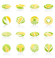 Wheat and rye logo template set elements for desig vector