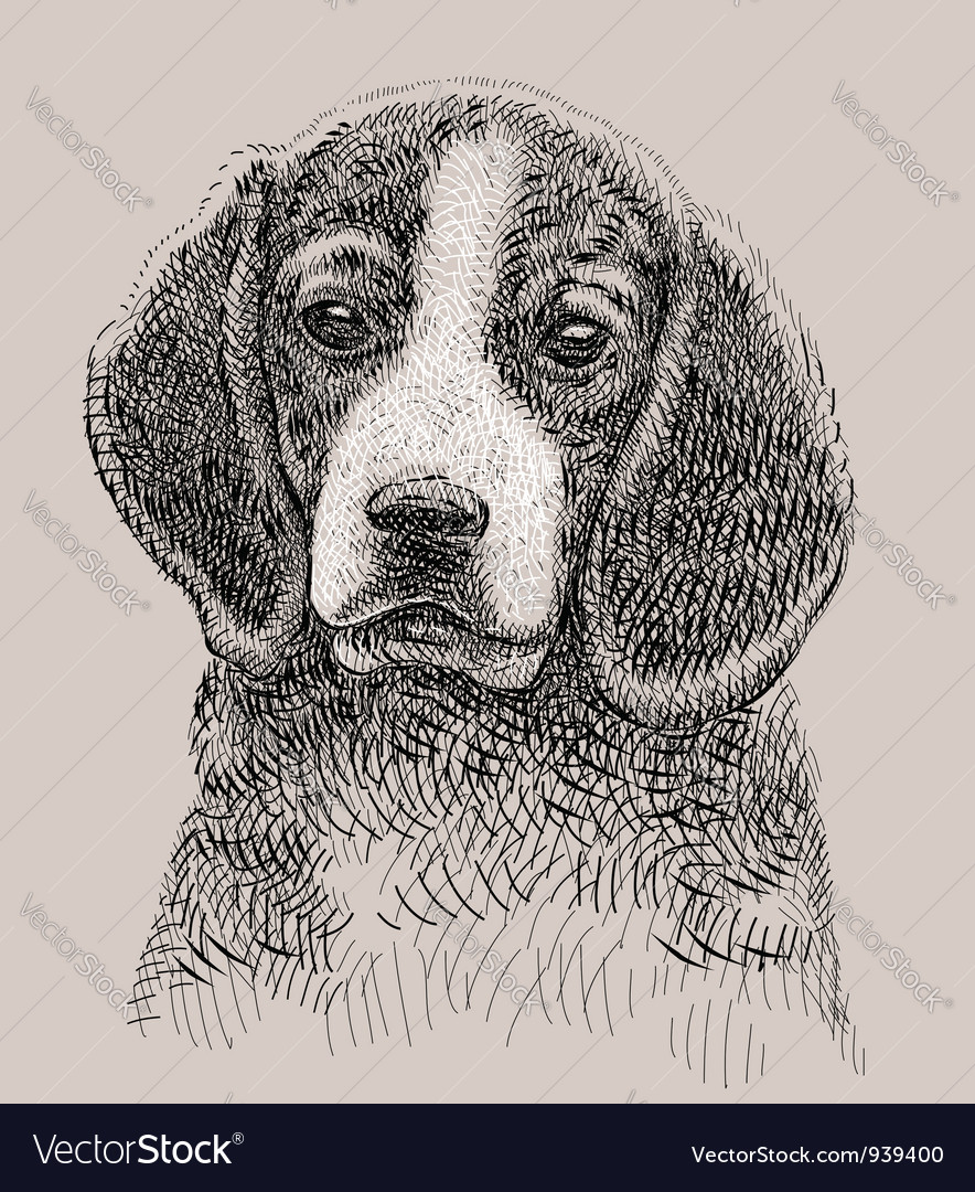 Dog drawing vector | Price: 3 Credit (USD $3)