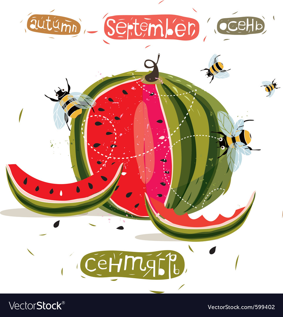 Watermelon vector | Price: 3 Credit (USD $3)