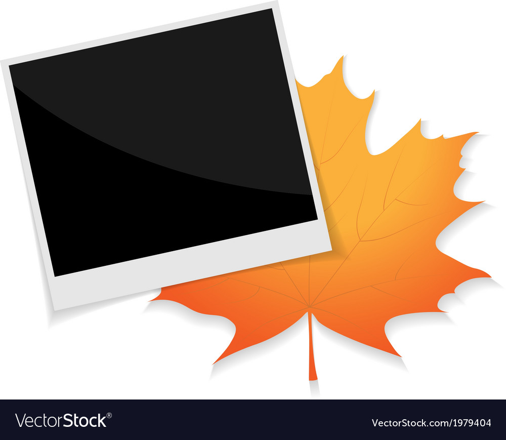 Photo leaf vector | Price: 1 Credit (USD $1)