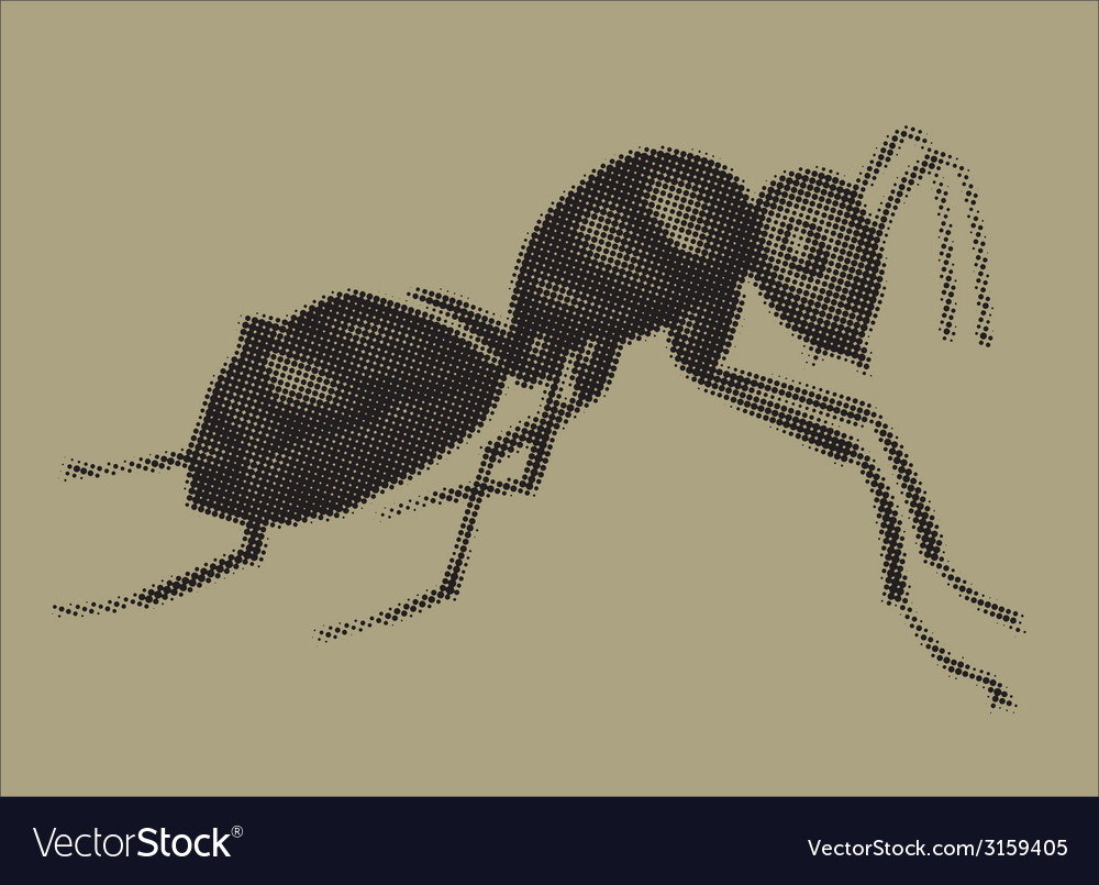 An ant vector | Price: 1 Credit (USD $1)