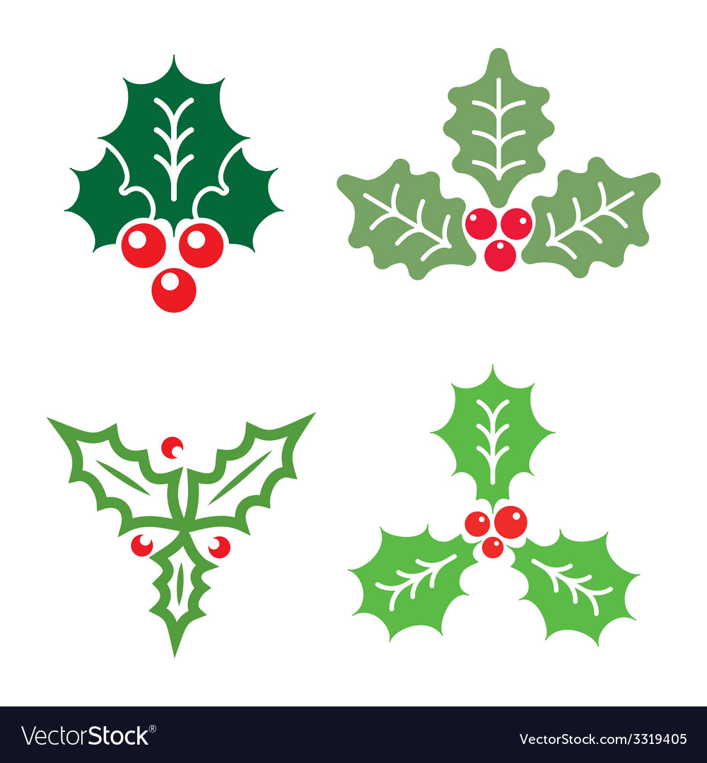 Christmas holly vector | Price: 1 Credit (USD $1)