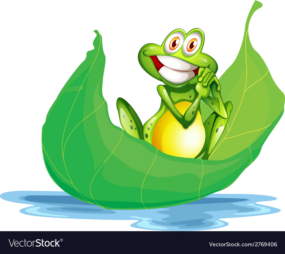 A smiling frog on the big leaf vector | Price: 1 Credit (USD $1)