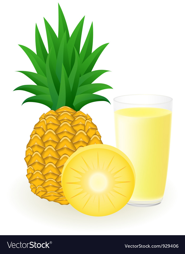 Pineapple juice vector | Price: 1 Credit (USD $1)