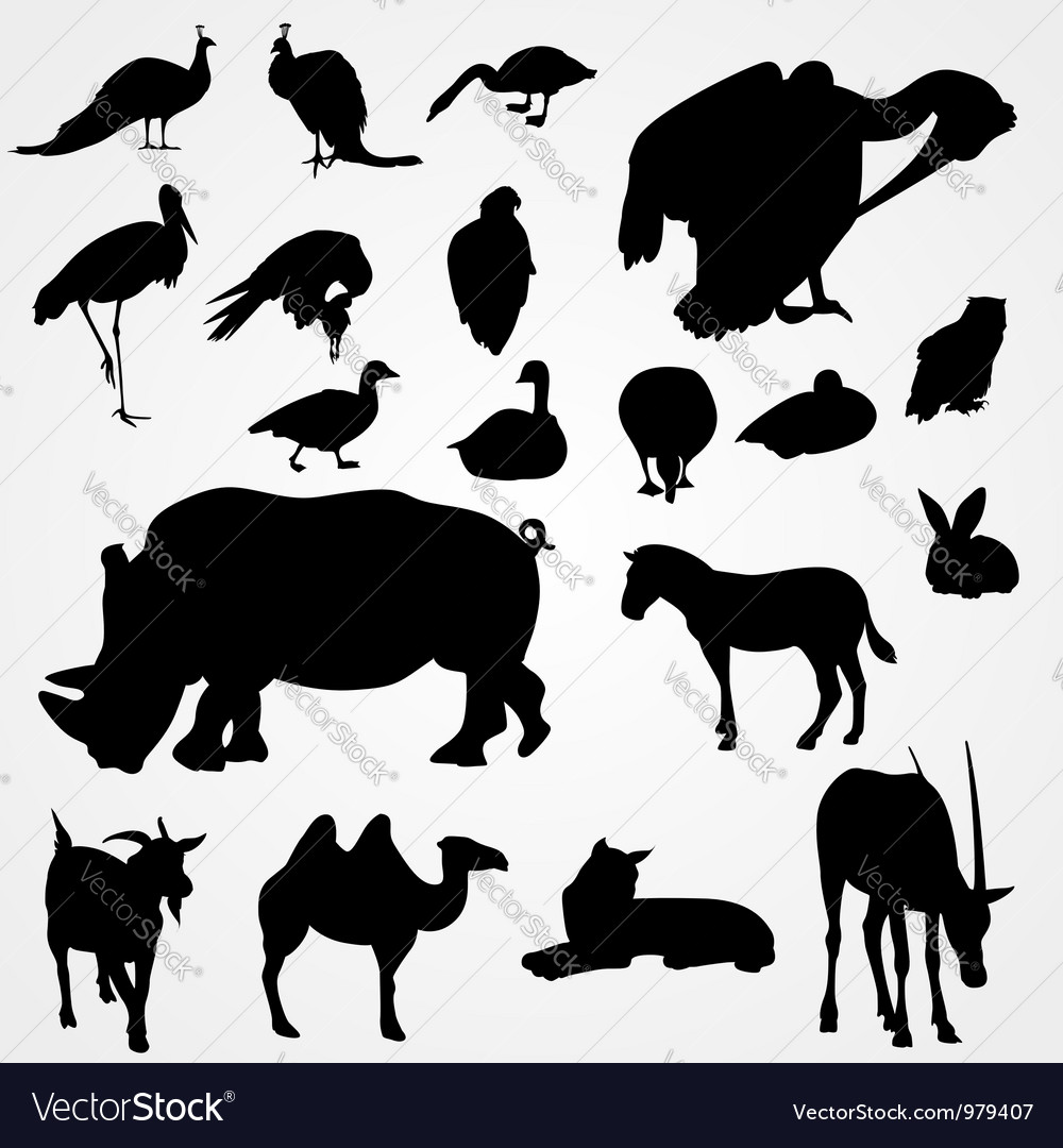 Set of silhouettes of animals on zoo vector | Price: 1 Credit (USD $1)