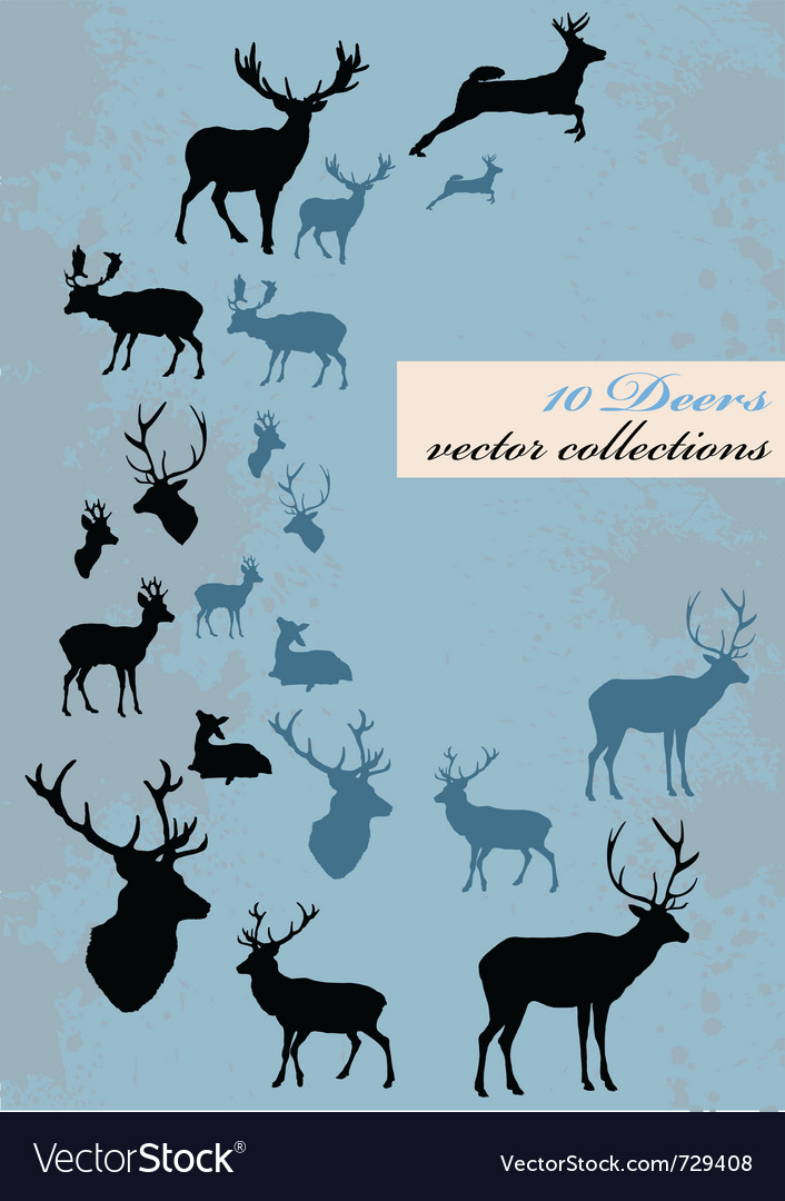 Different deers vector | Price: 1 Credit (USD $1)