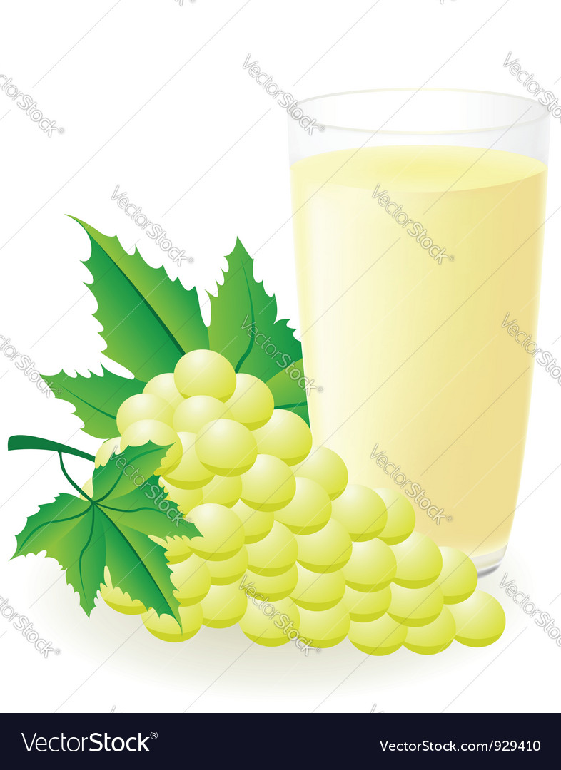 White grape juice vector | Price: 1 Credit (USD $1)