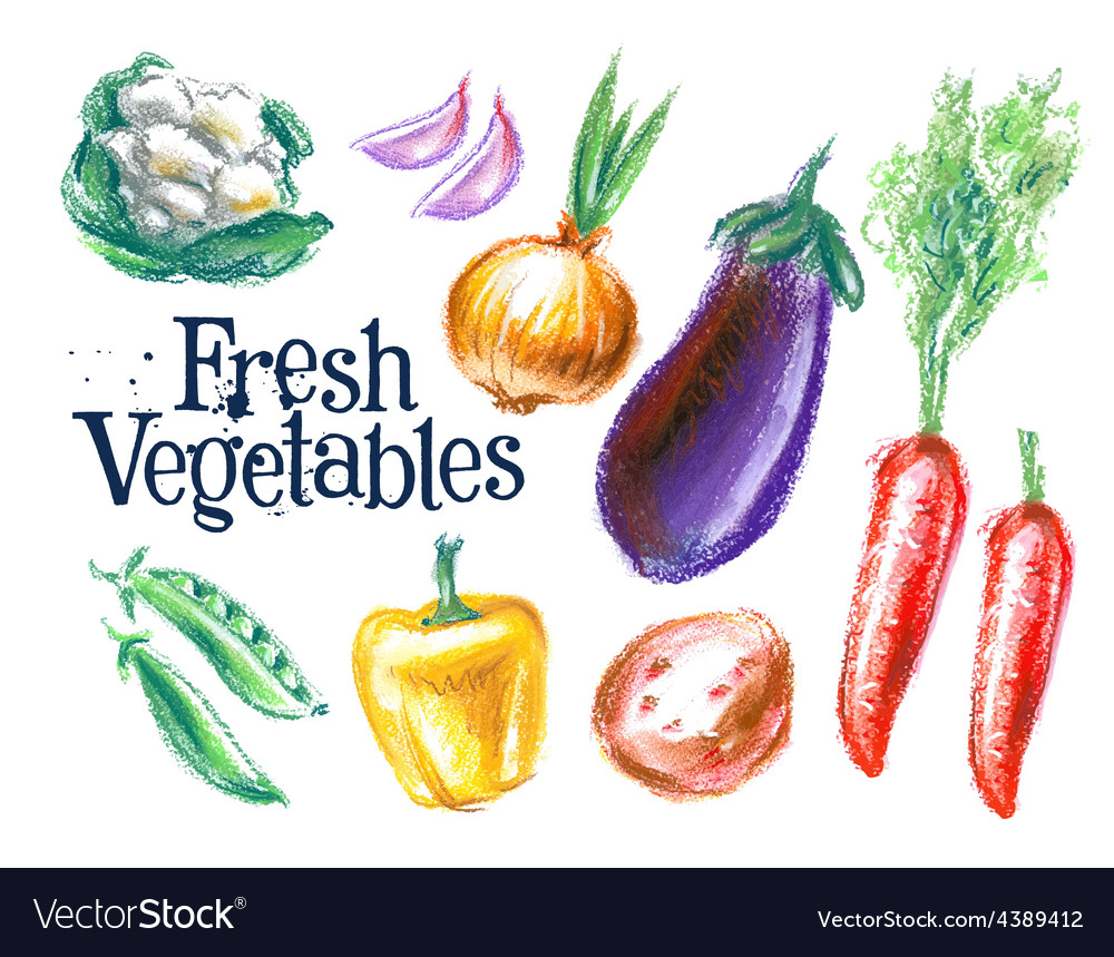 Ripe vegetables logo design template vector | Price: 3 Credit (USD $3)
