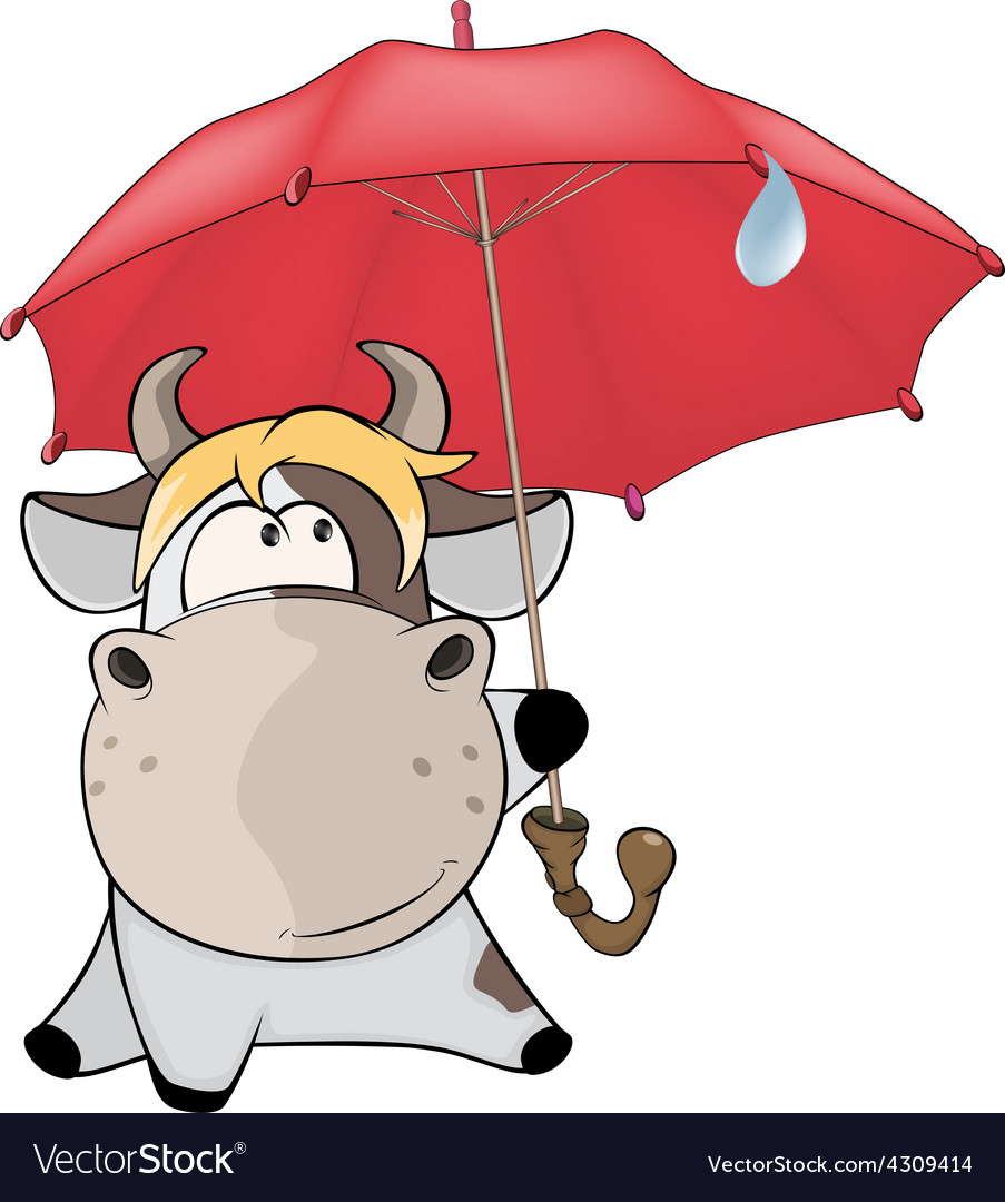 A small cow and an umbrella cartoon vector | Price: 1 Credit (USD $1)