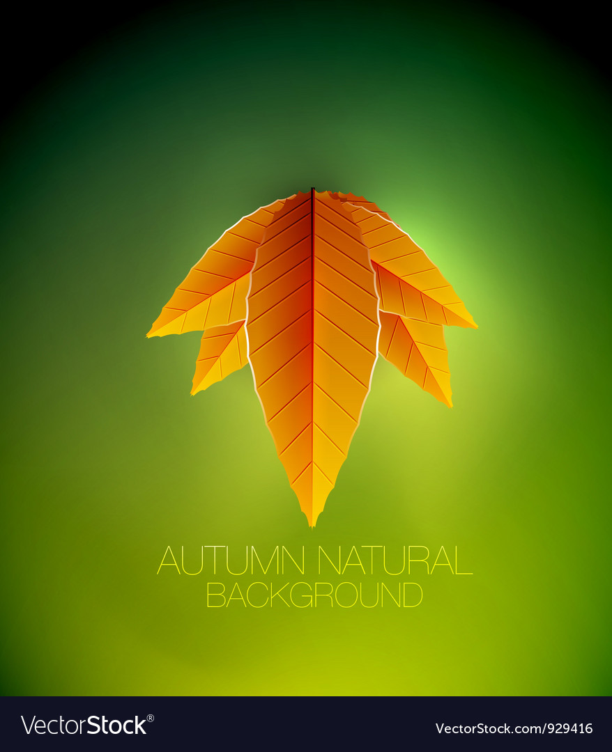 Autumn leaves concept nature background vector | Price: 1 Credit (USD $1)