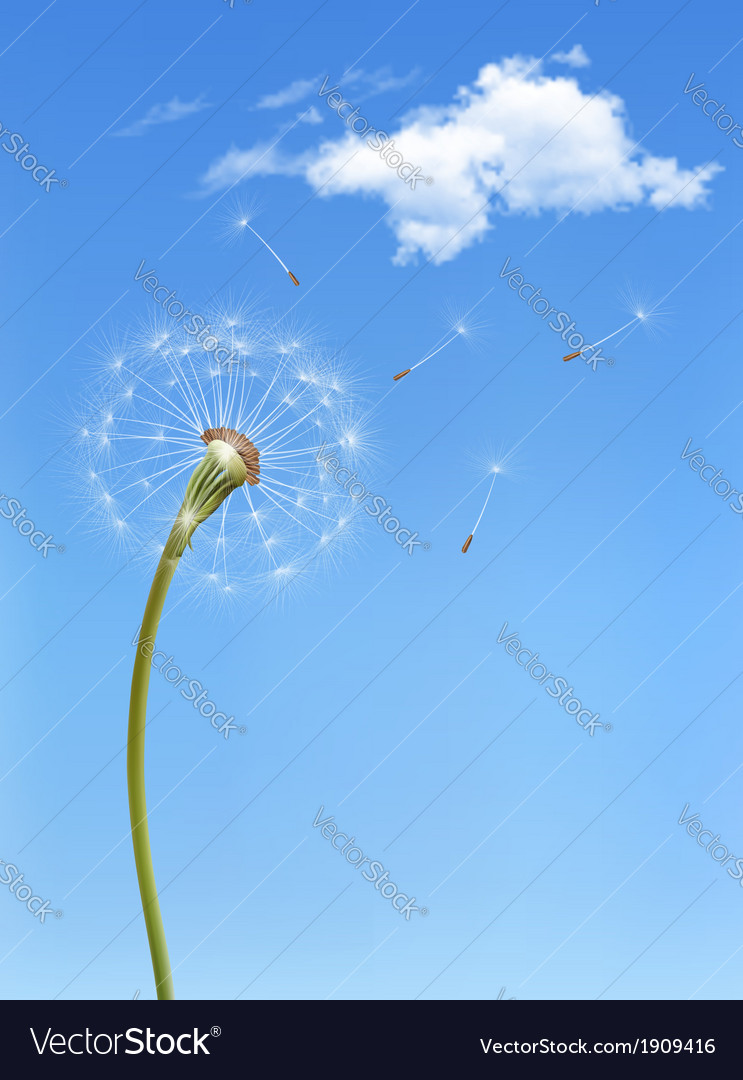 Background with a dandelion in front of a blue sky vector | Price: 1 Credit (USD $1)