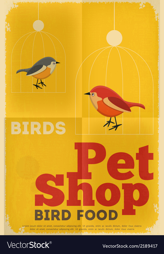 Pet shop poster bird vector | Price: 1 Credit (USD $1)