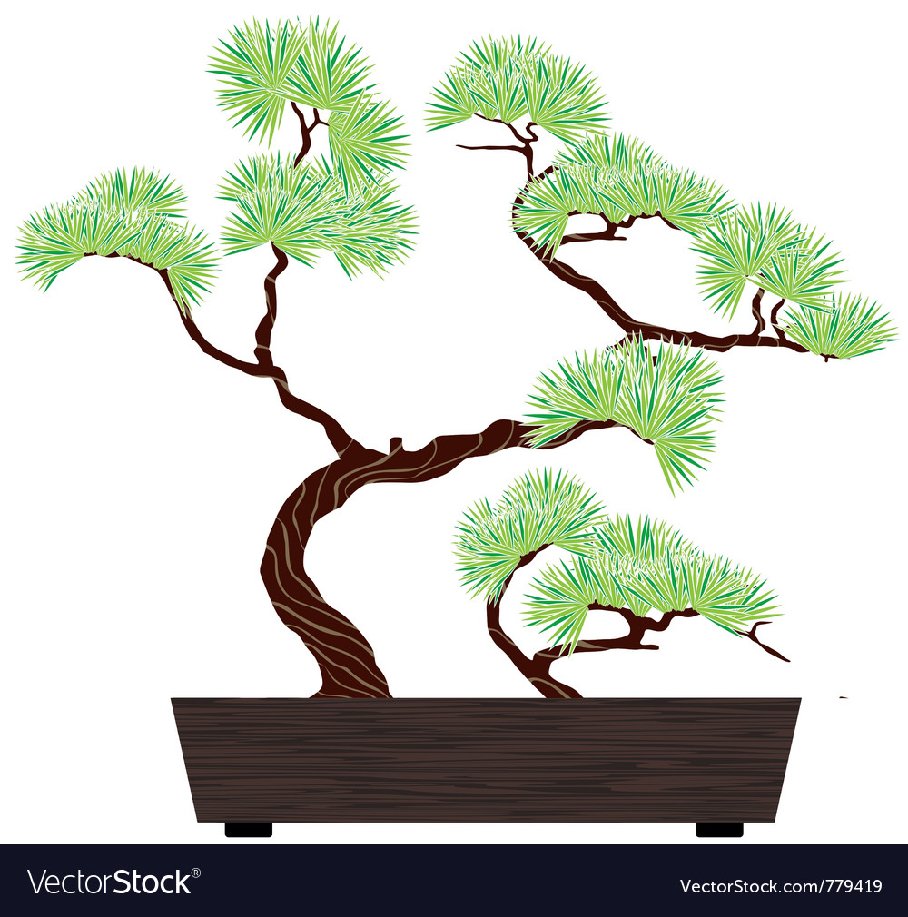 Bonsai green tree vector | Price: 1 Credit (USD $1)