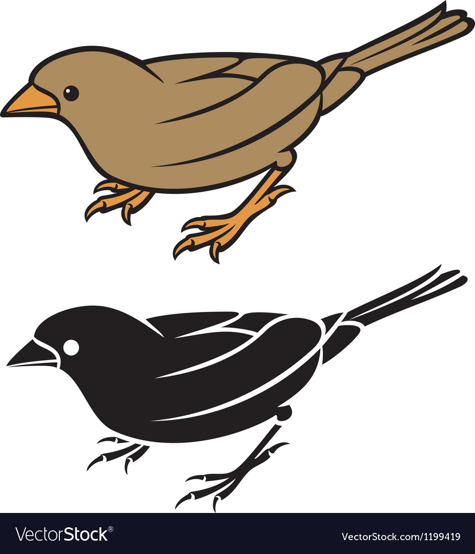 Sparrow - small bird vector | Price: 1 Credit (USD $1)