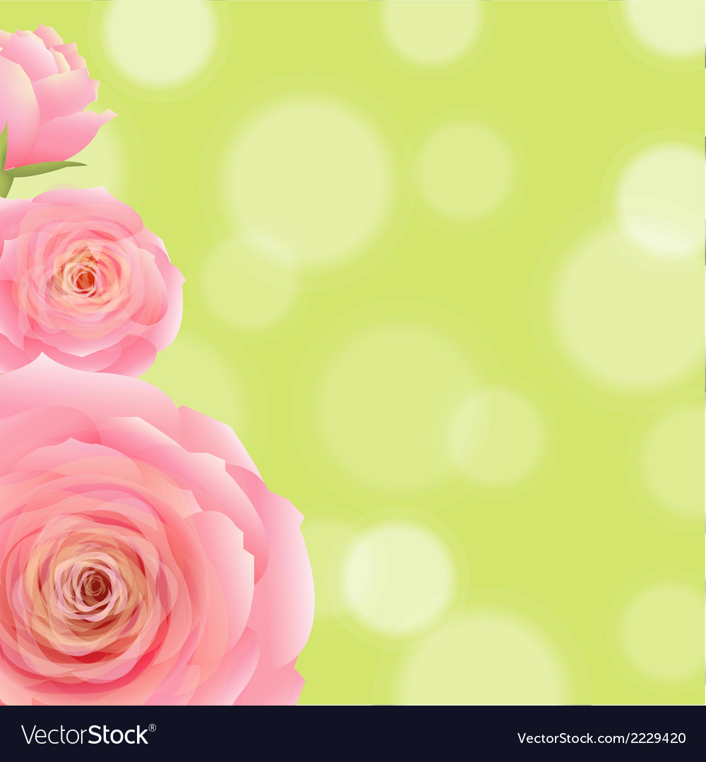 Pink rose with bokeh vector | Price: 1 Credit (USD $1)