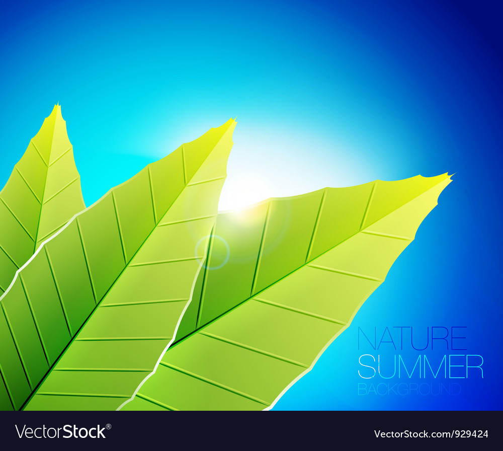 Green nature leaf background vector | Price: 1 Credit (USD $1)