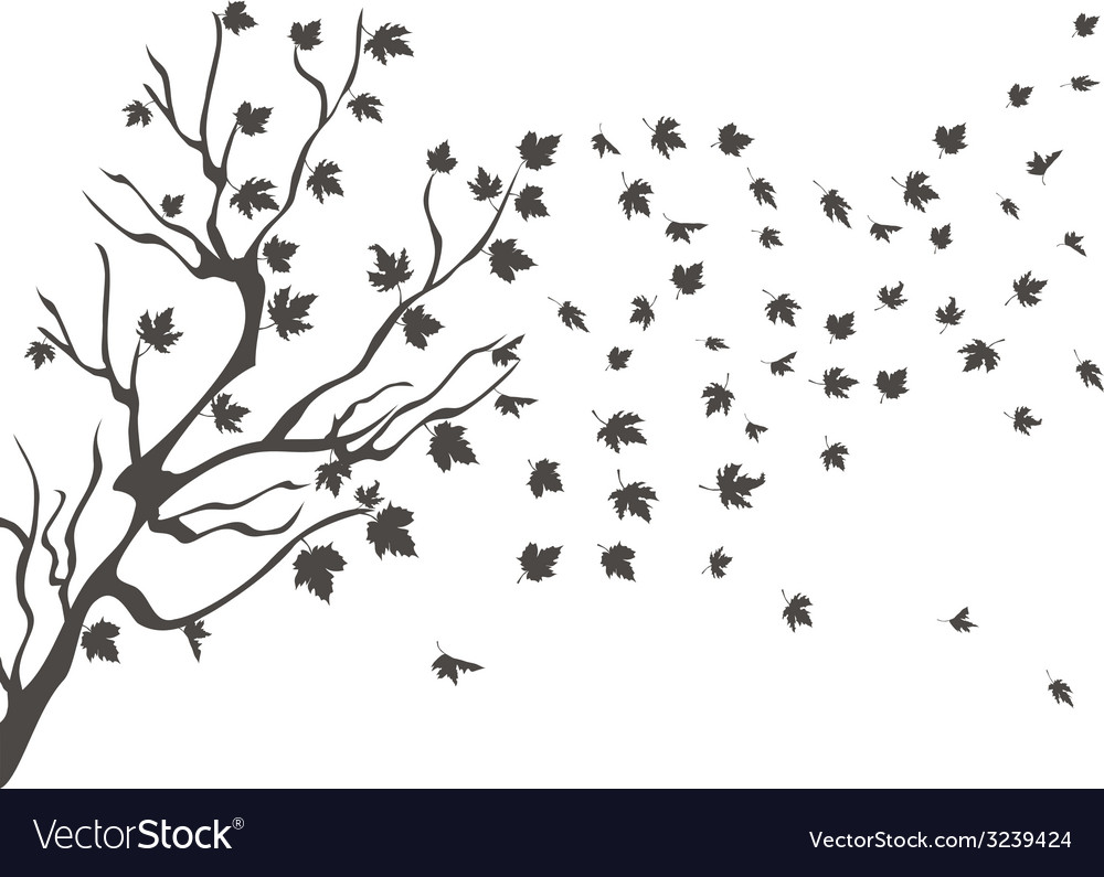 Maples falling background vector   Price: 1 Credit (USD $1)