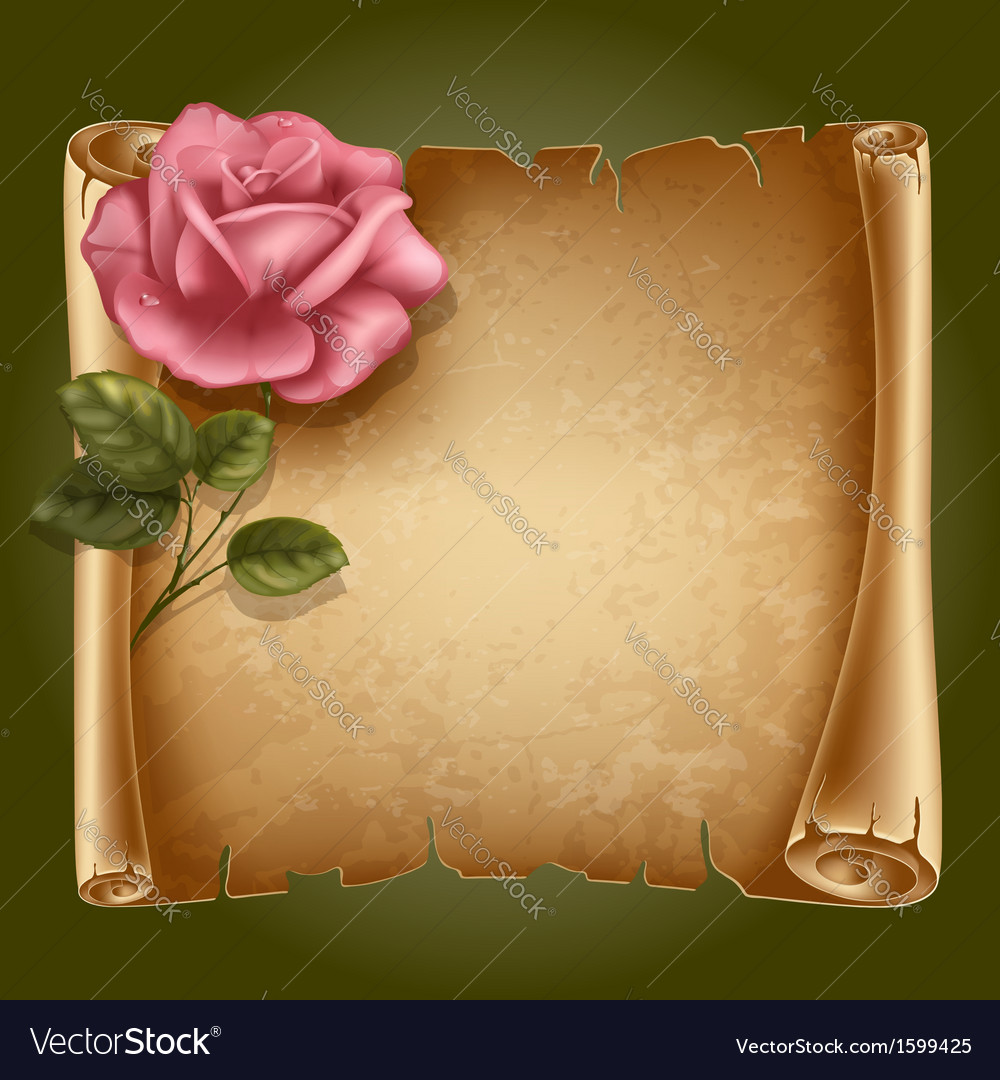 Old paper with rose vector | Price: 1 Credit (USD $1)