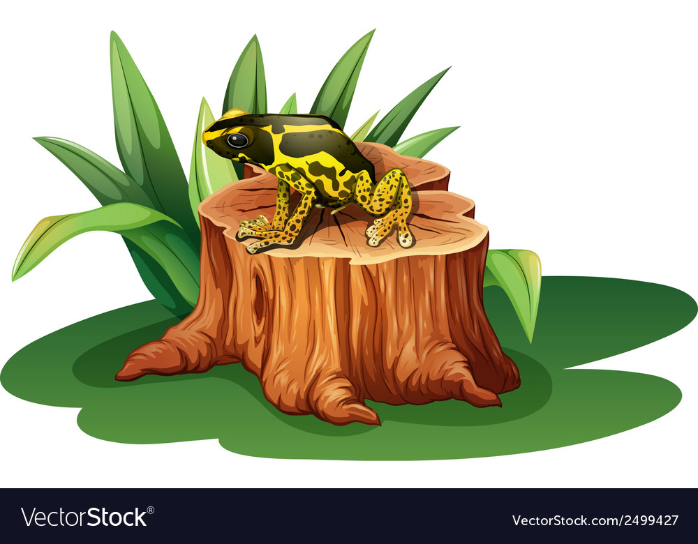 A frog above the stump vector | Price: 1 Credit (USD $1)