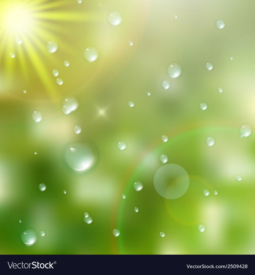 Water drops on green background plus eps10 vector | Price: 1 Credit (USD $1)