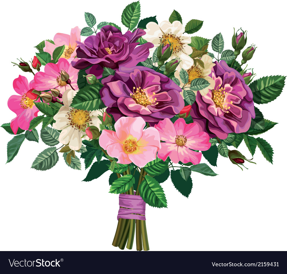 Bouquet of wild rose and of violet roses vector | Price: 3 Credit (USD $3)