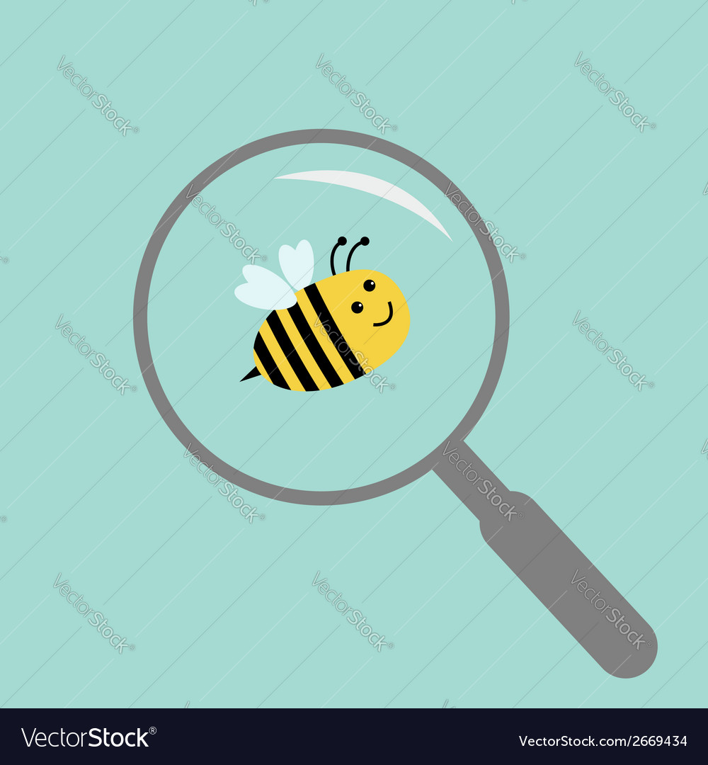 Bee under magnifier zoom lense flat design vector | Price: 1 Credit (USD $1)