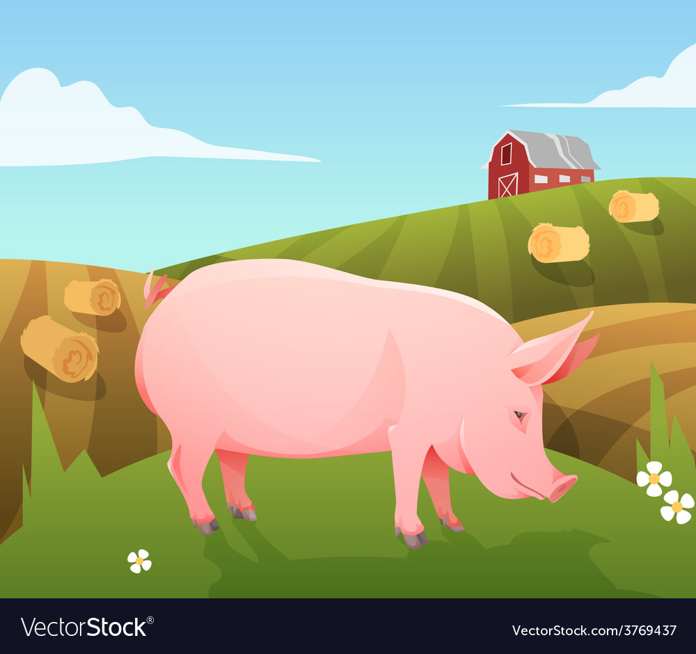Pig on farm vector | Price: 3 Credit (USD $3)