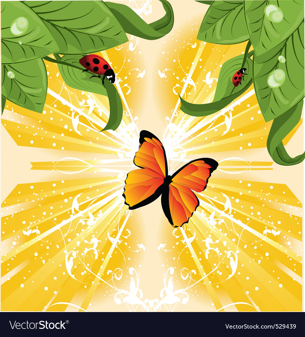 Butterfly nature vector | Price: 1 Credit (USD $1)