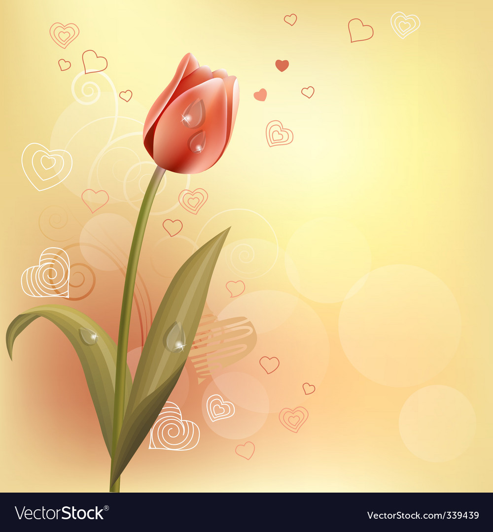 Tulip and hearts background vector | Price: 1 Credit (USD $1)