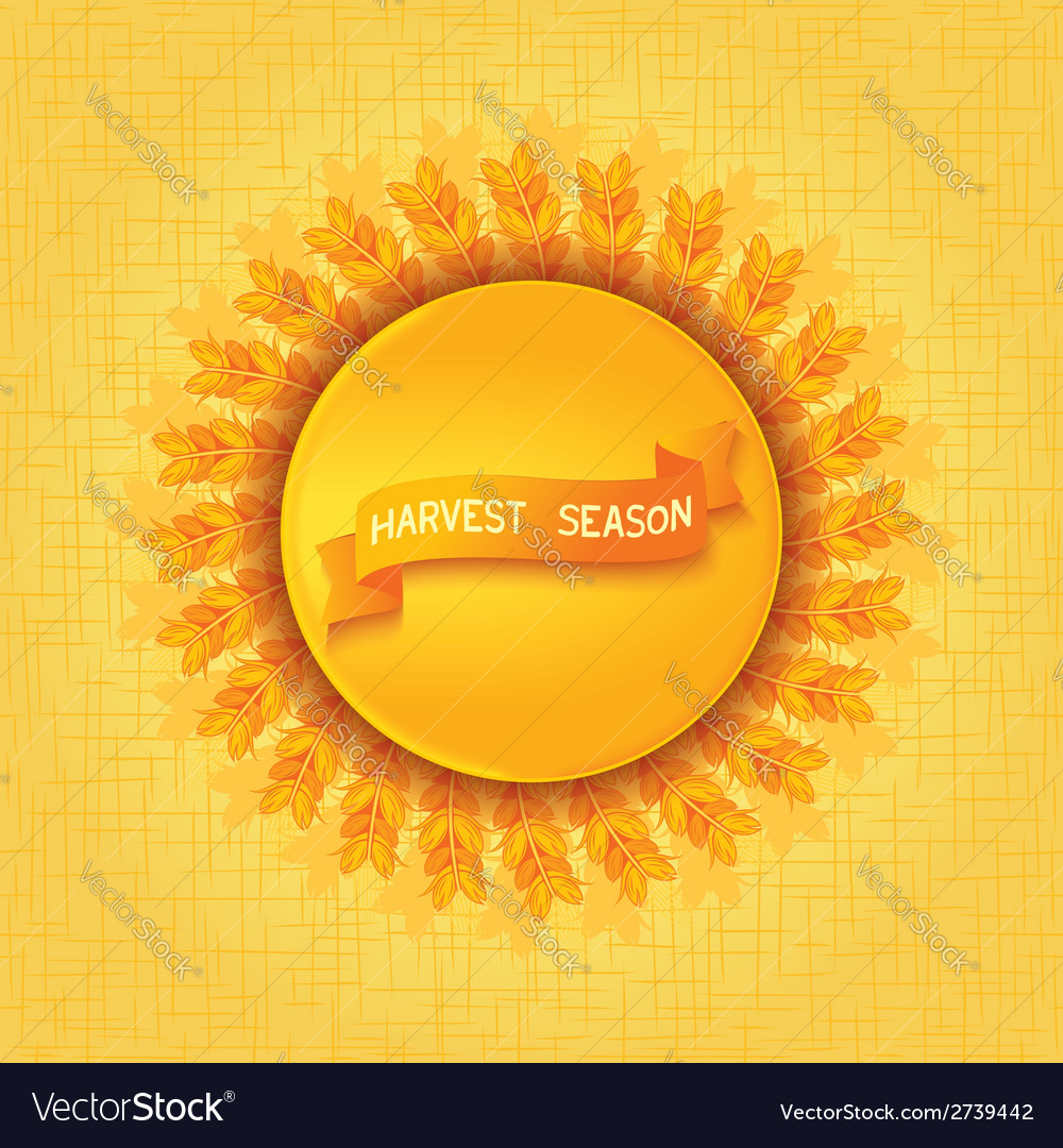 Harvest season design vector | Price: 1 Credit (USD $1)