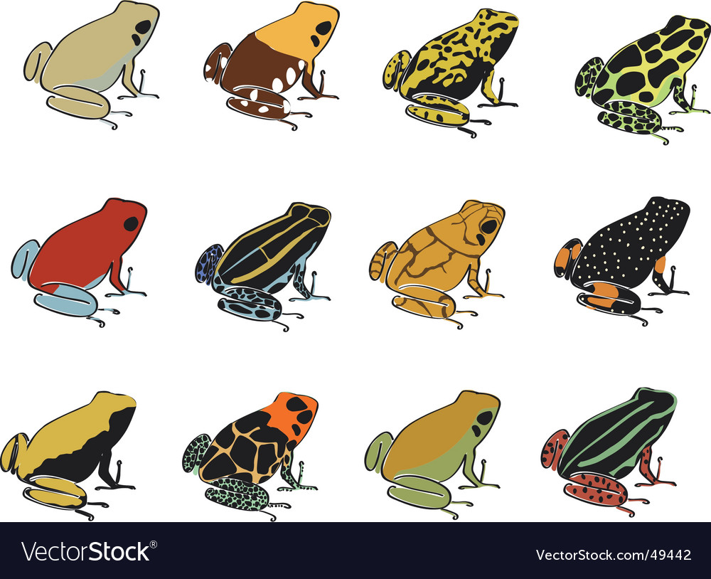 Various species of poisondart frogs vector