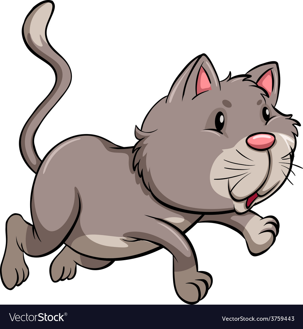 A gray cat vector | Price: 1 Credit (USD $1)