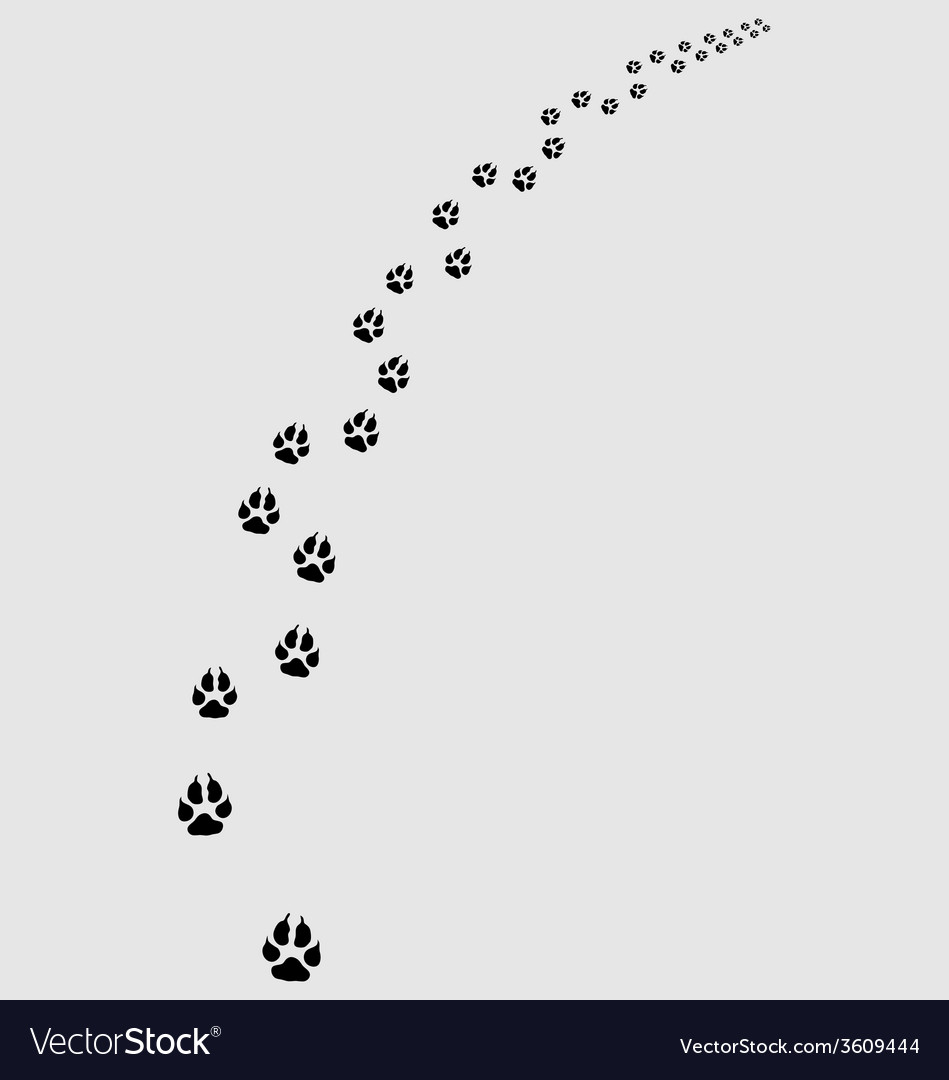 Trail of dogs vector | Price: 1 Credit (USD $1)