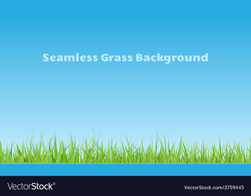 Grass seamless background vector