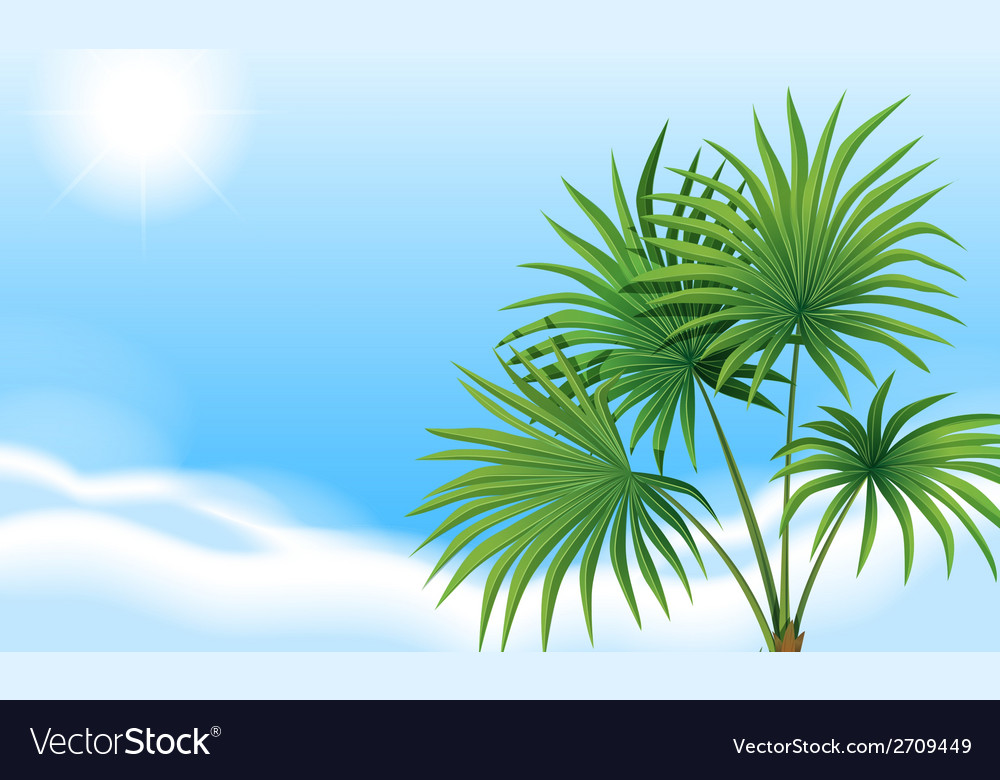 A palm plant and a clear blue sky vector | Price: 1 Credit (USD $1)