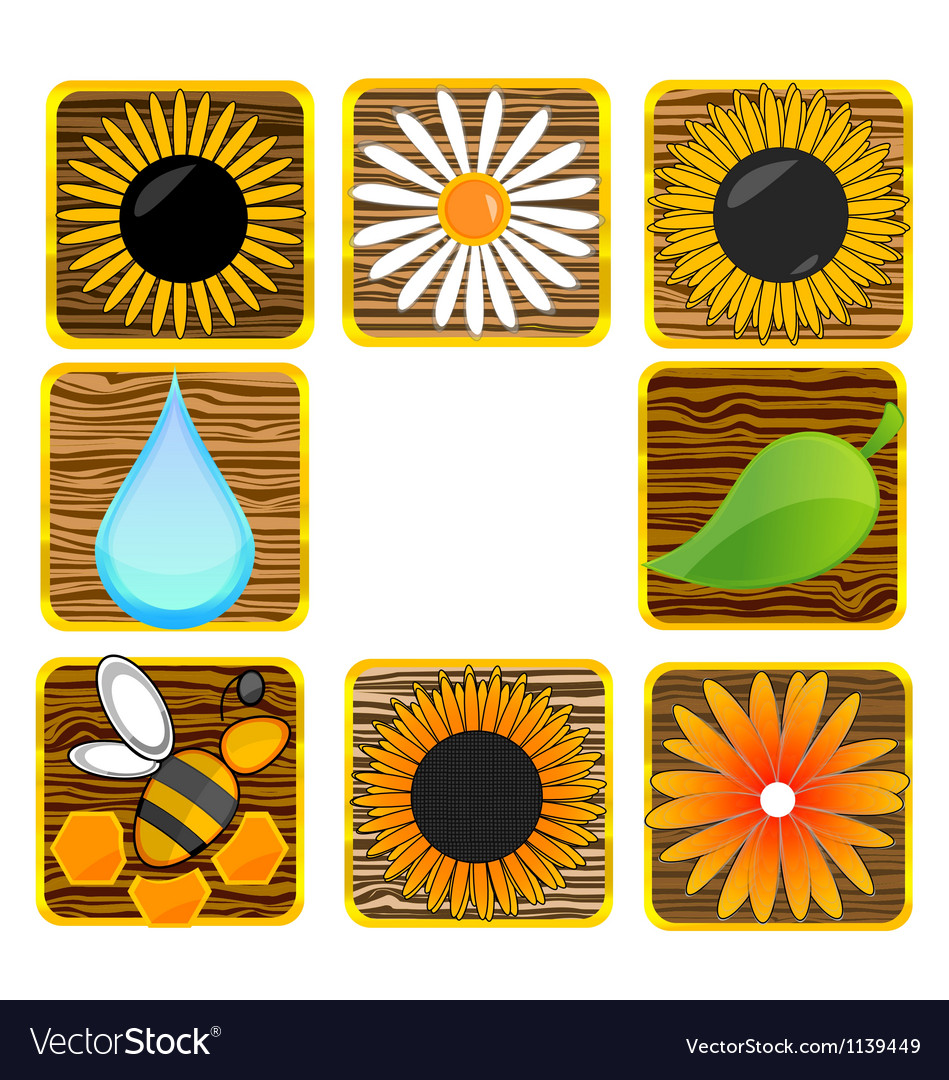 Nature and eco creative symbols set vector | Price: 1 Credit (USD $1)