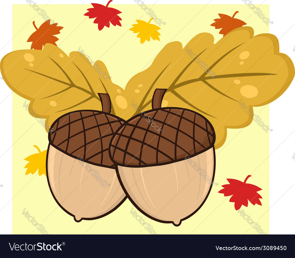 Cartoon acorn vector | Price: 1 Credit (USD $1)