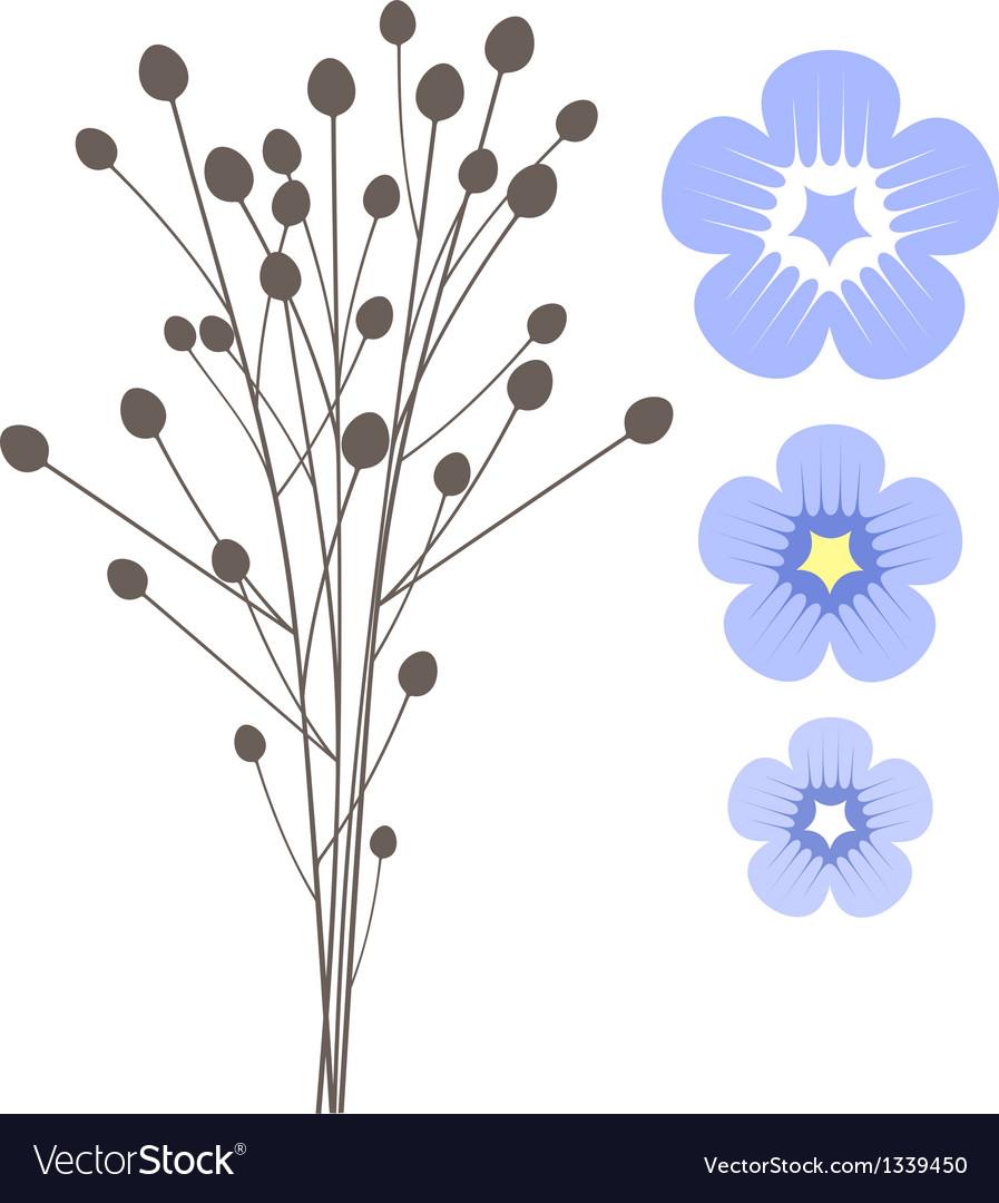 Flax vector | Price: 1 Credit (USD $1)