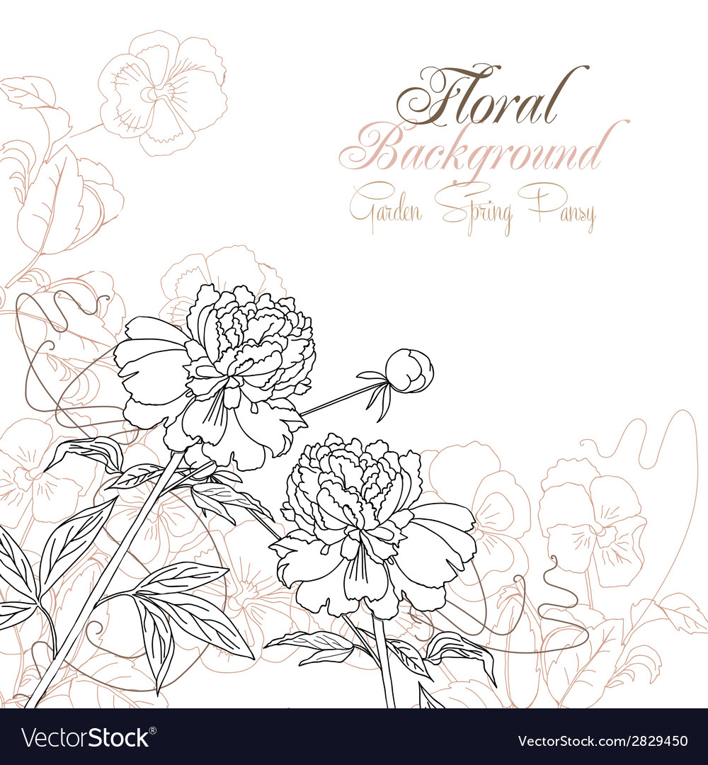 Floral background with pansies and peonies vector   Price: 1 Credit (USD $1)