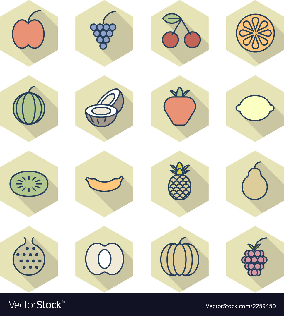 Thin line icons for fruits vector | Price: 1 Credit (USD $1)