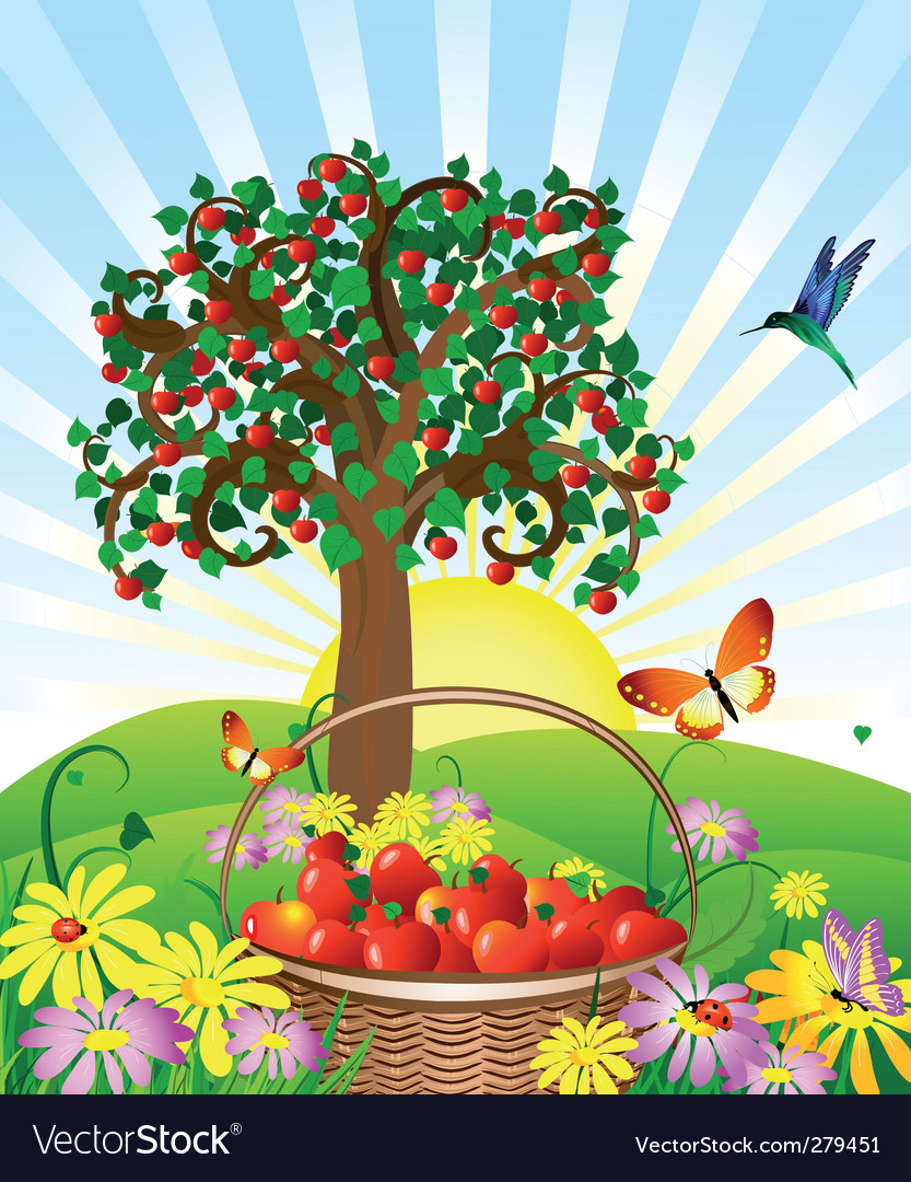 Apple basket vector | Price: 1 Credit (USD $1)