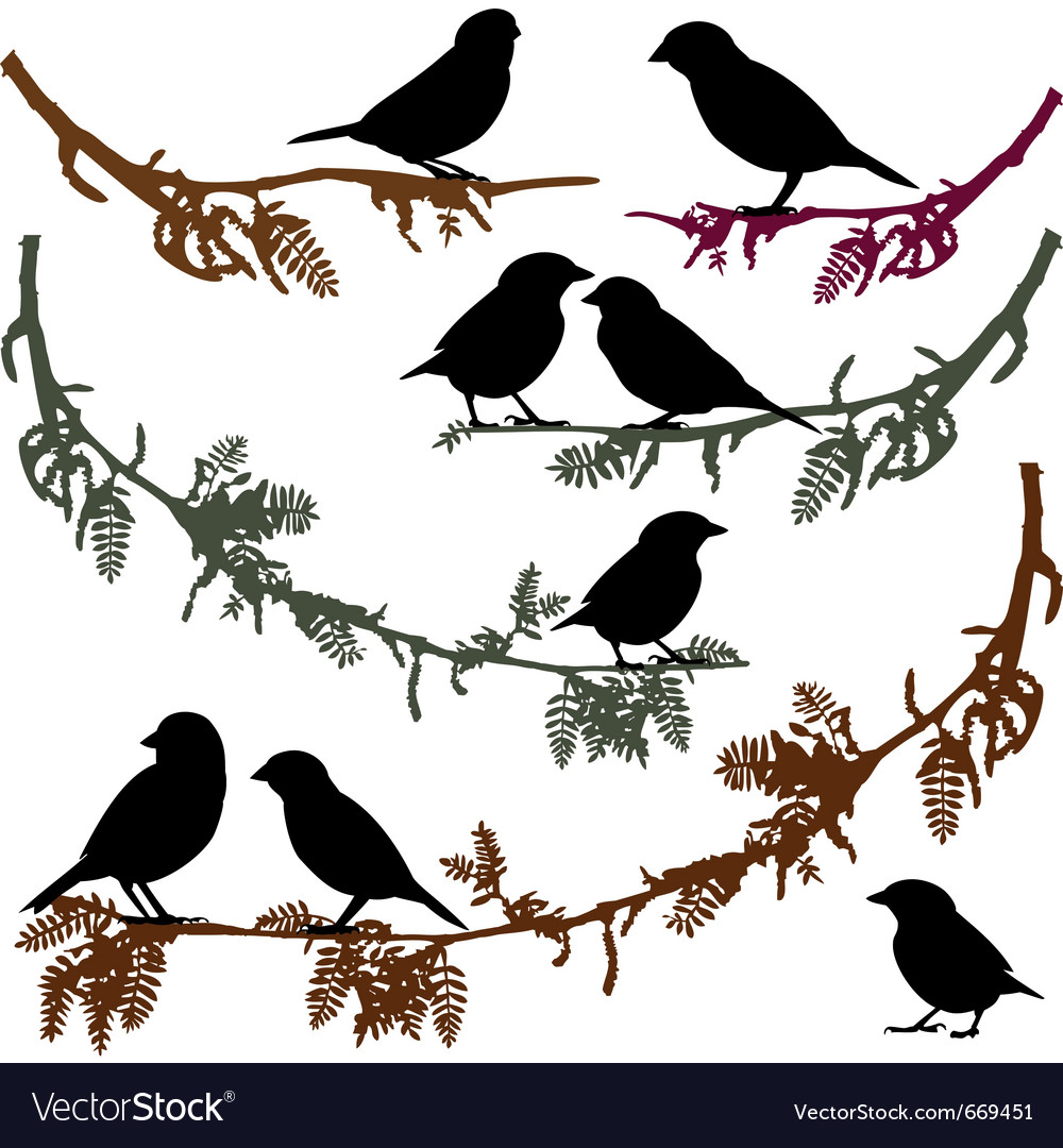 Birds on branch tree vector | Price: 1 Credit (USD $1)