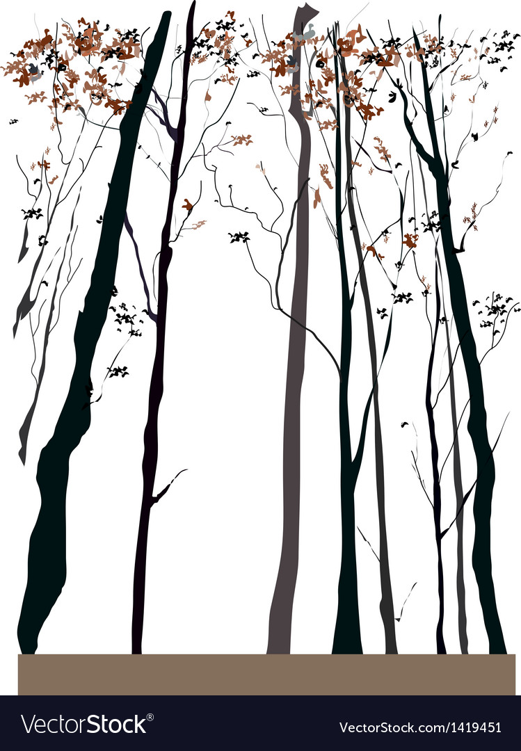 Tree forest background vector | Price: 1 Credit (USD $1)