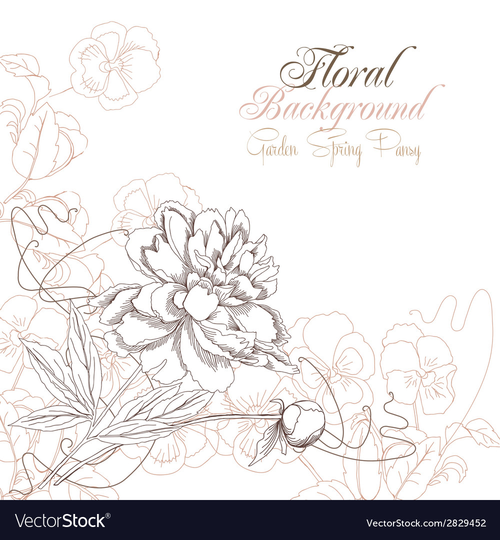 Floral background with pansies and peony vector   Price: 1 Credit (USD $1)