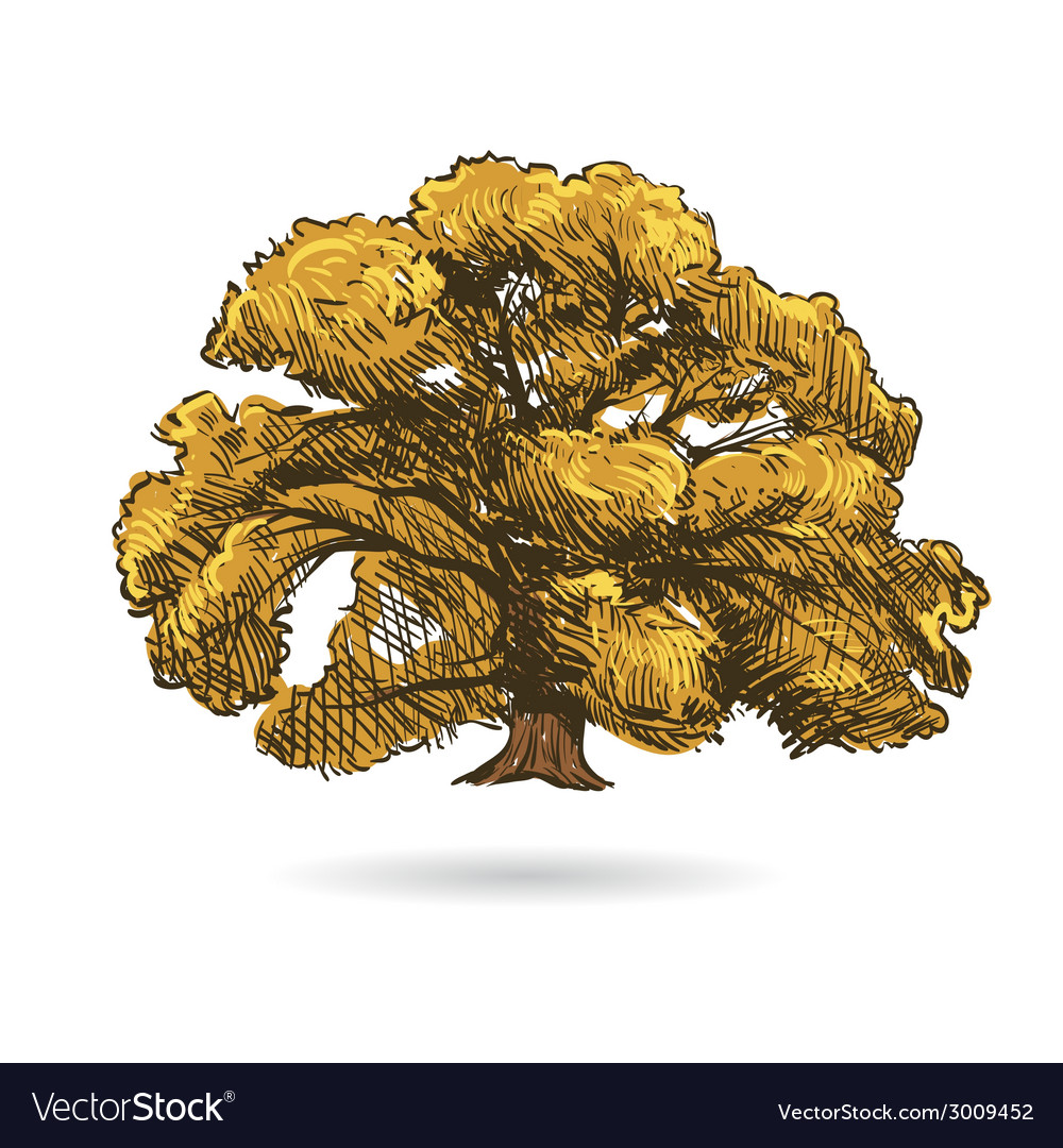 Tree drawing isolated vector | Price: 1 Credit (USD $1)