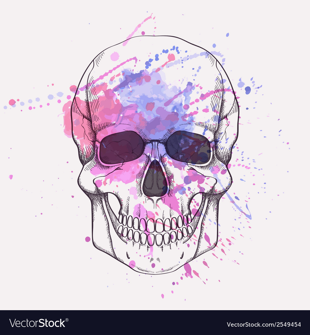 Human skull with watercolor splash vector | Price: 1 Credit (USD $1)