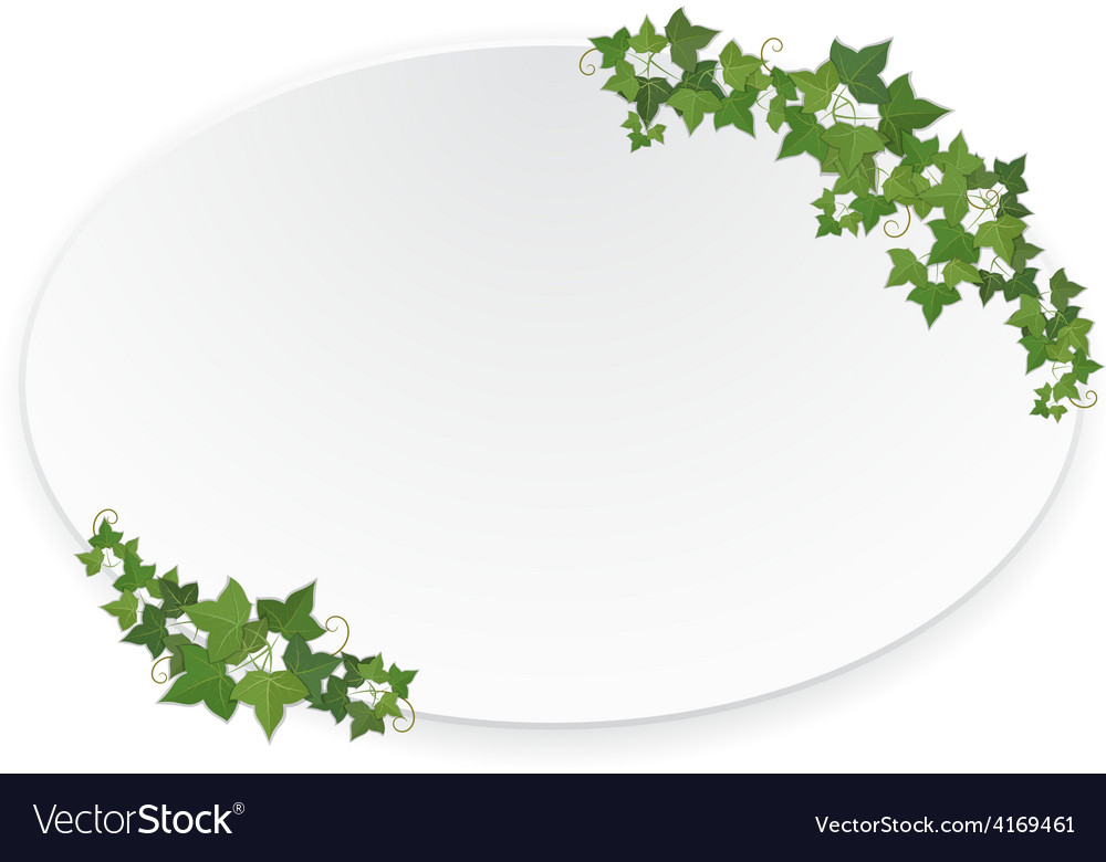 Ellipse banner with ivy vector | Price: 1 Credit (USD $1)