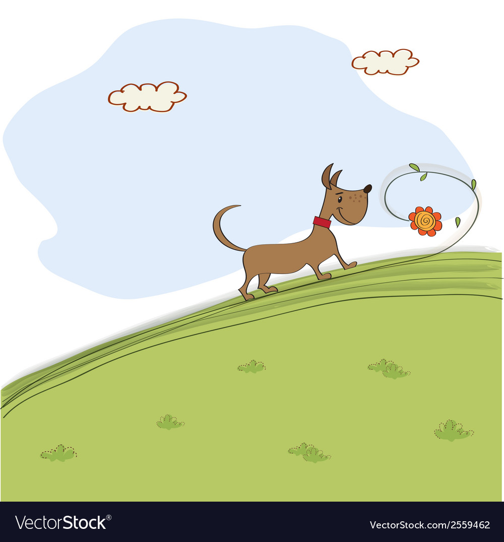 Cute dog who smells a flower on meadow vector | Price: 1 Credit (USD $1)