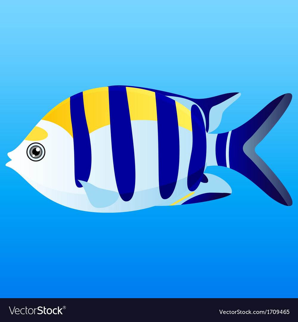 A of a yellow blue and white indo-pacific s vector | Price: 3 Credit (USD $3)